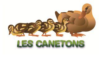 Les Canetons