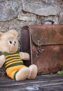 teddy-828506_1920